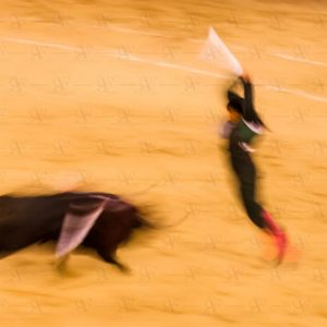 Abstract bullfighting