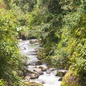 Barbo River – Risaralda, Colombia